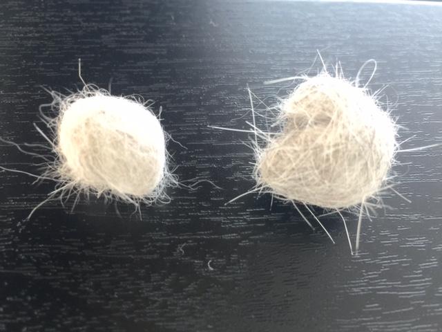 左はコーム、右はラバーブラシで取った抜け毛
