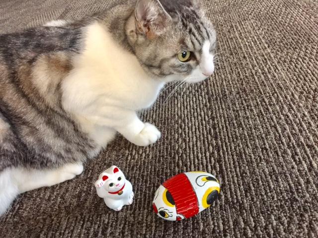 和楽2・3月号【招き猫】特集 新年は招き猫で幸運を呼び込もう!