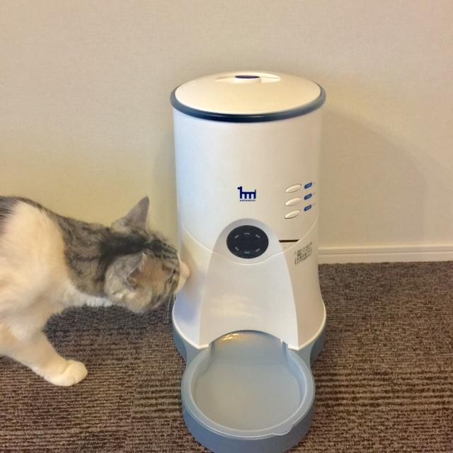 ペットウォッチ自動給餌器に任せて安心、猫のお留守番