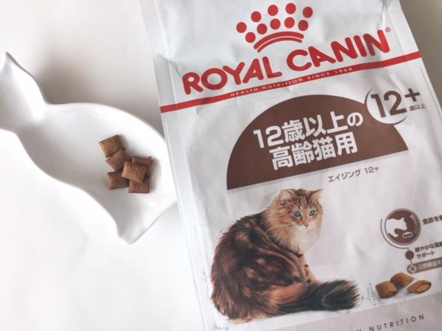 12歳以上の高齢猫用フード【ロイヤルカナン エイジング12+】