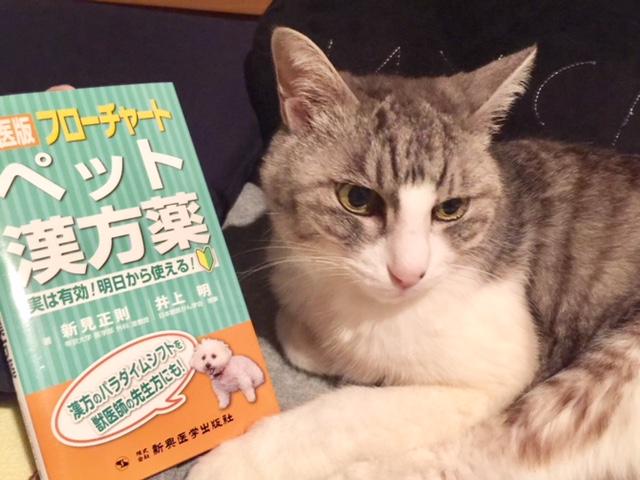 【獣医版フローチャート ペット漢方薬】本を購入してみました