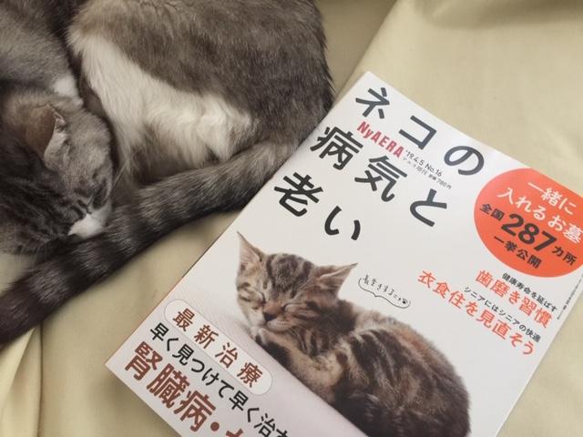 NyAERAニャエラ「ネコの病気と老い」高齢猫さん必読ですにゃ