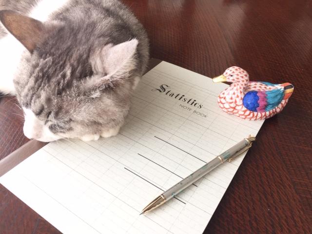 レトロシックなエコール・統計ノートで【自作】猫の健康管理手帳